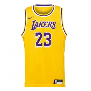 KIDS' LEBRON JAMES LOS ANGELES LAKERS SWINGMAN ICON